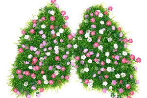 Cortes de pasto con flores en forma de pulmones