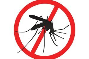 Ilustración de mosquito prohibido