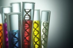 Tubos de ensayo con ñoquuido de color y modelos de ADN en su interior