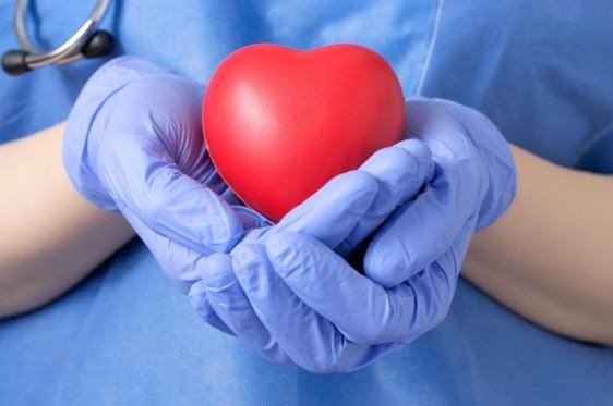 Doctor vestido de azul sosteniendo un corazón rojo de juguete