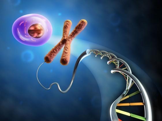 La hemofilia es una enfermedad genética que es transmitida por la madre
