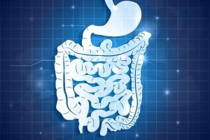 Ilustración del aparato gastrointestinal humano y fondo abstracto azul con tonos claros