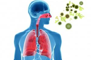 Prevenir y atender casos de influenza durante la temporada invernal, plantea diputada Azuara.