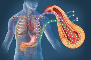 En su desarrollo y evolución participan ocho defectos fisiopatológicos que, en conjunto, se conocen como el octeto ominoso, los cuales contribuyen a la persistencia de hiperglucemia: