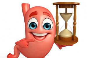 Personaje animado n forma de estomago sostiene un reloj de arena