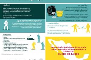 Infografía del virus del chikungunya
