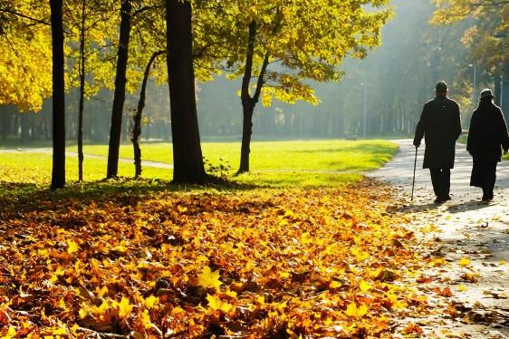 Adultos mayores caminando en un parque en otoño