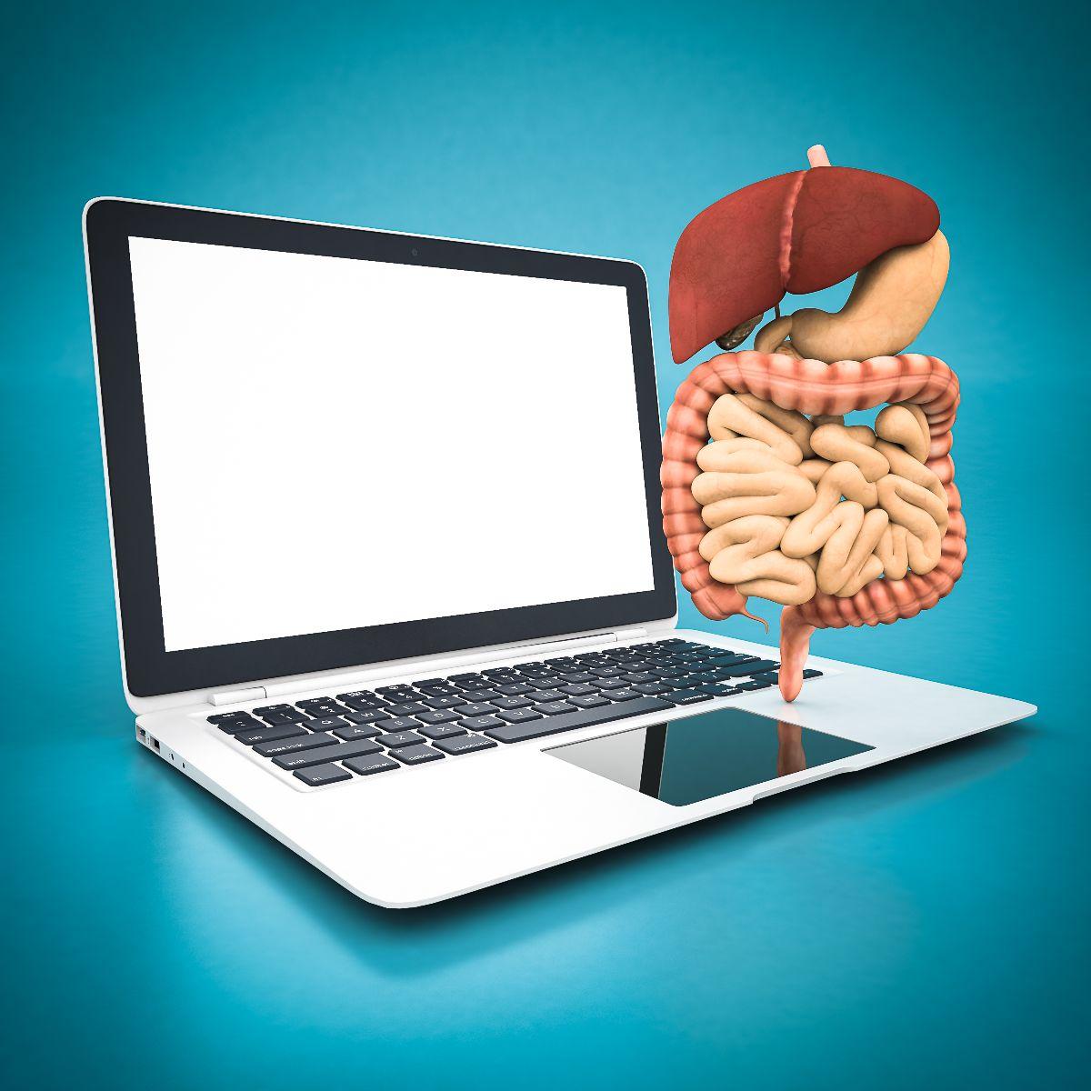 Ilustración de computadora laptop con modelo del sistema digestivo