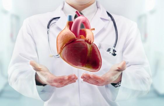 Médico con estetoscopio y corazón en las manos