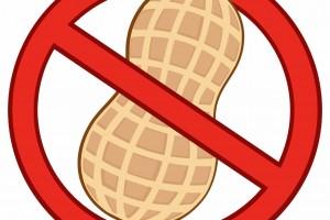 En alrededor de 20% de las personas que desarrollan una alergia al cacahuate a edad temprana, esta acaba por pasar con el tiempo. El 80% restante mantiene alguna sensibilidad al maní durante toda su vida, pero la gravedad de los síntomas varía ampliamente de una a otra persona.