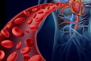 En la mayoría de los casos, una biometría hemática y una química sanguínea de 35 elementos puede detectar señales de alerta para estas variables de cáncer.