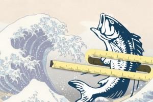 Ilustración de ola on un pescado encima una cinta metrica
