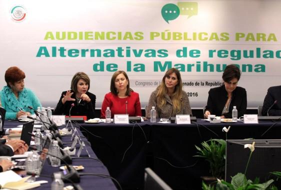 A las Audiencias Públicas para la Alternativa de Regulación de la Marihuana también asistió la senadora María Hilaria Domínguez Arvizu; los diputados federales Fernando Rubio Quiroz y Vidal Llerenas Morales; así como algunos integrantes del Consejo Técnico para las Audiencias.