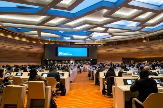 Comite B trabajando en la Sala XVII en el Palacio de las Naciones