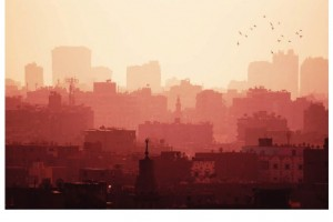The Economic Consequence of Itdoor Air Pollution, OECD Publishing Paris