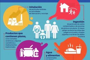 Aunque los efectos perjudiciales del plomo son bien conocidos y muchos países han tomado medidas al respecto, la exposición al plomo, sobre todo en la infancia, sigue siendo un problema importante para los profesionales sanitarios y los responsables de la salud pública.