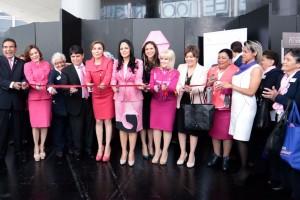 Urgen medidas preventivas y mejor capacitación para reducir cáncer de mama, señalan senadores