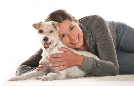 Las enfermedades transmitidas por vectores como garrapatas, pulgas y mosquitos afectan tanto a los animales como a las personas.