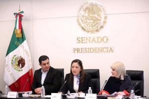 Décimo tercera reunión ordinaria de la Comisión de la Familia y Desarrollo Humano, a la que convoca su presidenta, senadora Lisbeth Hernández Lecona