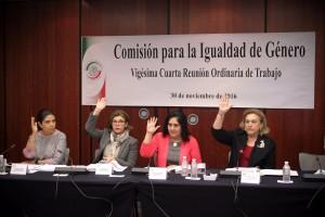 La titular de la Unidad de Género del Senado, Pamela Higuera Hidalgo, presentó su informe de las actividades.