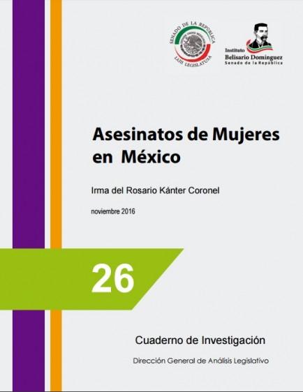 En México los asesinatos de mujeres no son reconocidos como problema prioritario; faltan resultados ante las acciones realizadas y la impunidad que los caracteriza.