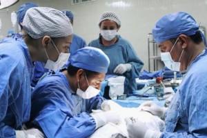 acientes con muerte cerebral dieron una segunda oportunidad de vida a cuatro personas que estaban en lista de espera desde hace más de 10 años.