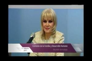 Comisión de Familia del Senado aprueba dictamen desarrollo de políticas para promover, fomentar y fortalecer integración familiar