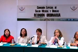1 de cada 4 mexicanos, entre 18 y 65 años de edad, tiene una historia de problemas psiquiátricos, directora del INP