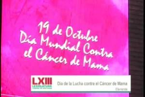 Cámara de Diputados realizó acciones para prevención temprana y contar con recursos presupuestales para atender cáncer de mama