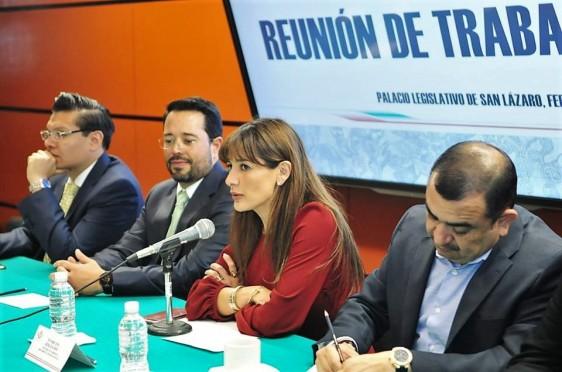 En reunión de la Comisión de Medio Ambiente con el coordinador ejecutivo de la CAME, Martín Gutiérrez