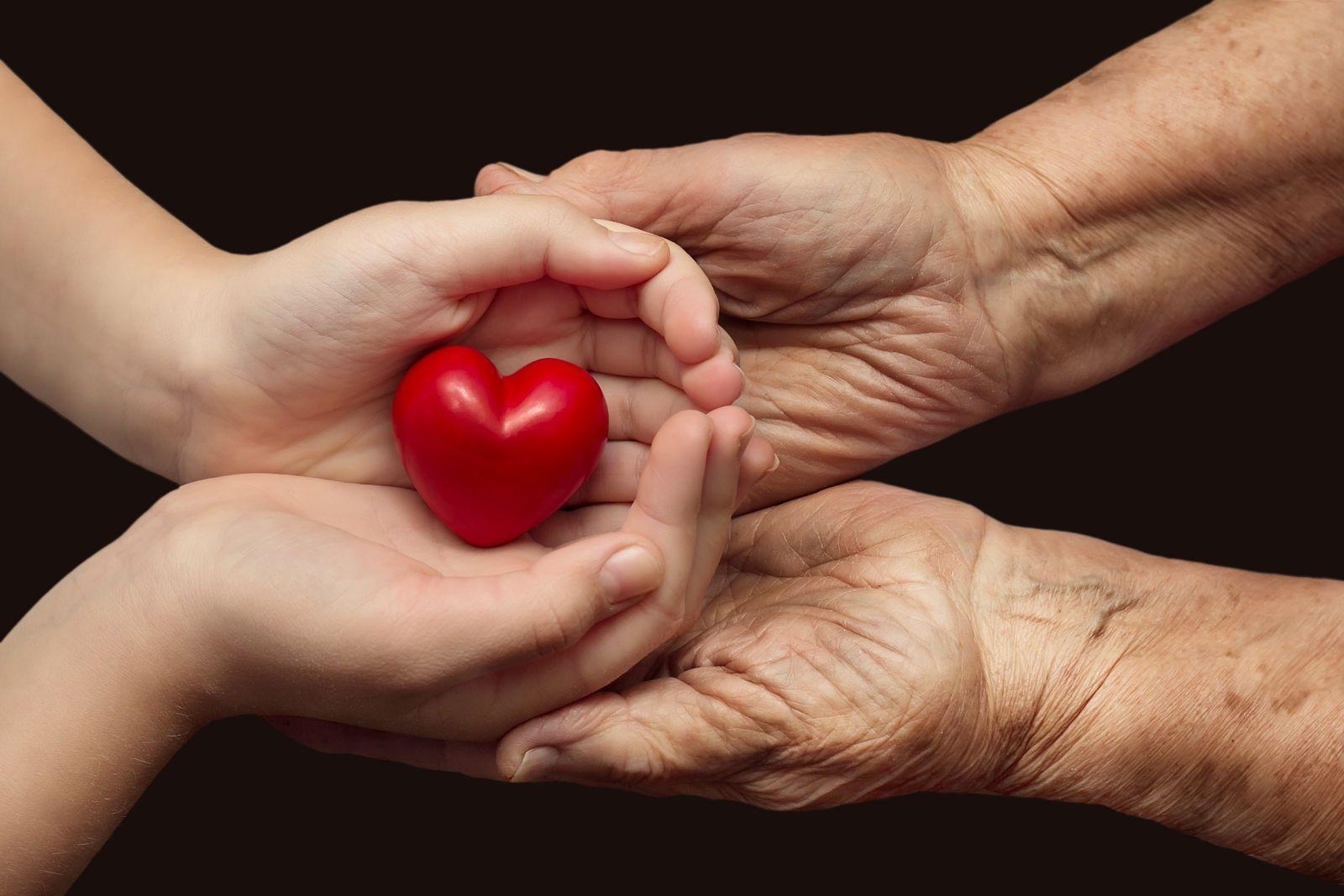 corazón en manos de un infante sostenida por un adulto mayor