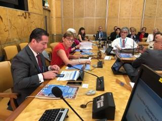 Reto de las autoridades sanitarias, evitar que se comercialicen productos médicos falsos y de baja calidad: manifestó el titular de la COFEPRIS en la 71ª Asamblea Mundial de la Salud, que se realiza en Ginebra, Suiza.