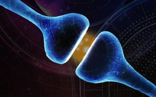 La solución forma parte del portafolio de GE Healthcare dentro del campo de las enfermedades neurológicas.