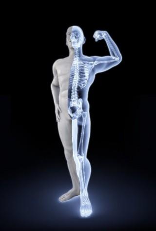 Nanotecnología, células madre y materiales innovadores para sanar huesos dañados.