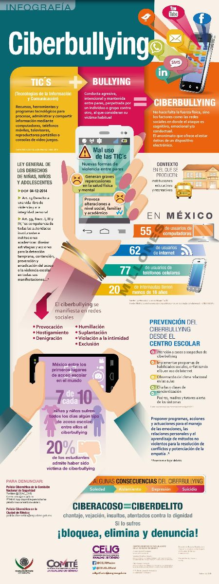 "infografía ""Ciberbullying"""