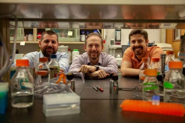 De izquierda a derecha, los investigadores Antoine Louveau, Jonathan Kipnis y Sandro Da Mesquita