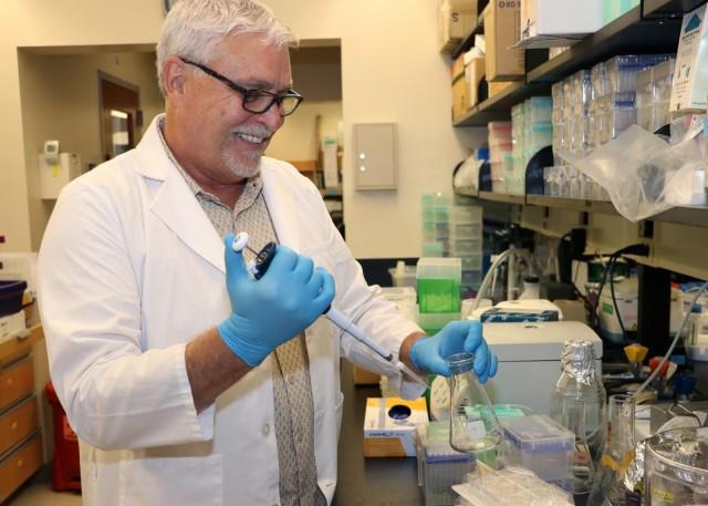 """""""Es posible que hayamos encontrado un talón de Aquiles para las células cancerosas, porque las células estromales y las vías PTEN pueden ser el blanco"""", dice Ostrowski."""