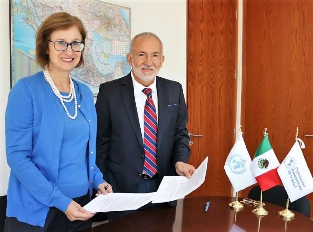 El documento que contempla acciones hasta marzo de 2019 fue firmado por la Directora General de Relaciones Internacionales de la Secretaría de Salud, licenciada Hilda Dávila Chávez, y el doctor Juan Manuel Sotelo Figueiredo, Representante interino de OPS/OMS en México.