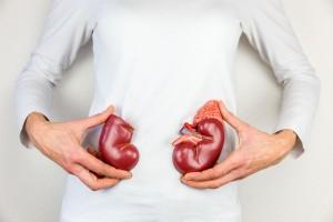 Ejercicio al extremo podría dañar tus riñones.