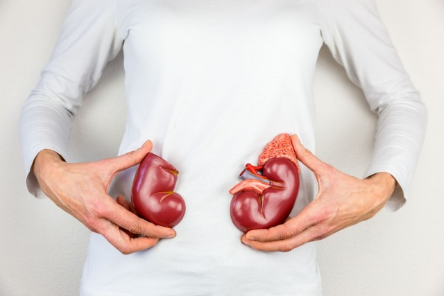Control del peso, de presión arterial y una vida sana, reduce la propensión a padecer insuficiencia renal crónica.