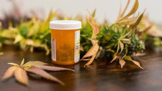 En 6 meses será posible encontrar en tiendas naturistas, tratamientos herbolarios  a base de marihuana.