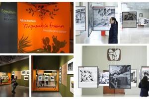 El Instituto Mexicano del Seguro Social (IMSS) presenta 2 exposiciones fotográficas que permiten adentrarse en la historia de las artes plásticas del Centro Médico Nacional Siglo XXI y conocer más sobre la herencia de nuestros antepasados gracias a la medicina tradicional mexicana.