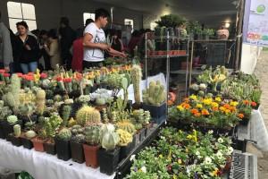 Exhibición y venta de una enorme diversidad de cactus y suculentascon productores de todo el país.