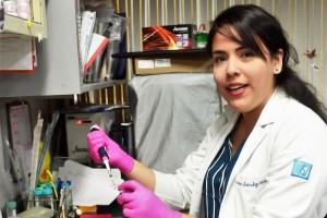 La molécula Serpina3k puede servir como marcador para descubrir problemas en el riñón, sin necesidad de hacer una biopsia, explicó Andrea Sánchez Navarro, del doctorado en Ciencias Biomédicas.