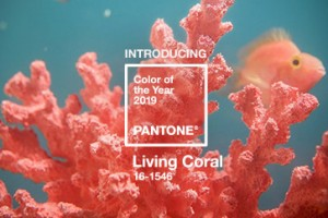 El tono de coral afirma la vida energiza y revive con un borde más suave