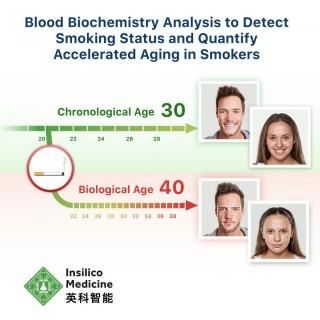 """Insilico Medicine, uno de los líderes en inteligencia artificial para el descubrimiento de fármacos, el desarrollo de biomarcadores, la medicina digital y la investigación sobre el envejecimiento, anunció la publicación de un nuevo documento de investigación en colaboración titulado """"Análisis de bioquímica de la sangre para detectar el estado de fumador y cuantificar el envejecimiento acelerado en fumadores"""", en la publicación Scintific Reports."""