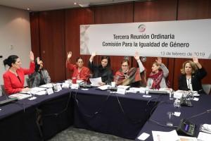 Tercera reunión ordinaria de trabajo de la Comisión para la Igualdad de Género
