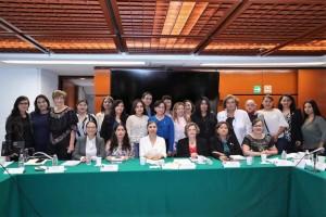 Ante la Comisión de Igualdad de Género, la titular del Instituto Nacional de las Mujeres, Nadine Gasman Zylberman, aseguró que los refugios para mujeres víctimas de violencia continuarán con supervisión del Estado.