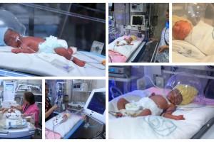 Los cinco bebés se encuentran estables y no requirieron apoyo ventilatorio. La madre se encuentra en buenas condiciones y sin complicaciones.