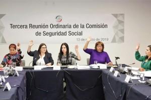 Asistieron las senadoras Imelda Castro Castro, Lilia Margarita Valdez Martínez, Mayuli Latifa Martínez Simón, Leonor Noyola Cervantes, y los senadores Radamés Salazar Solorio y Pedro Haces Barba.